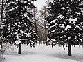 Kolomenskoye in winter 09.jpg