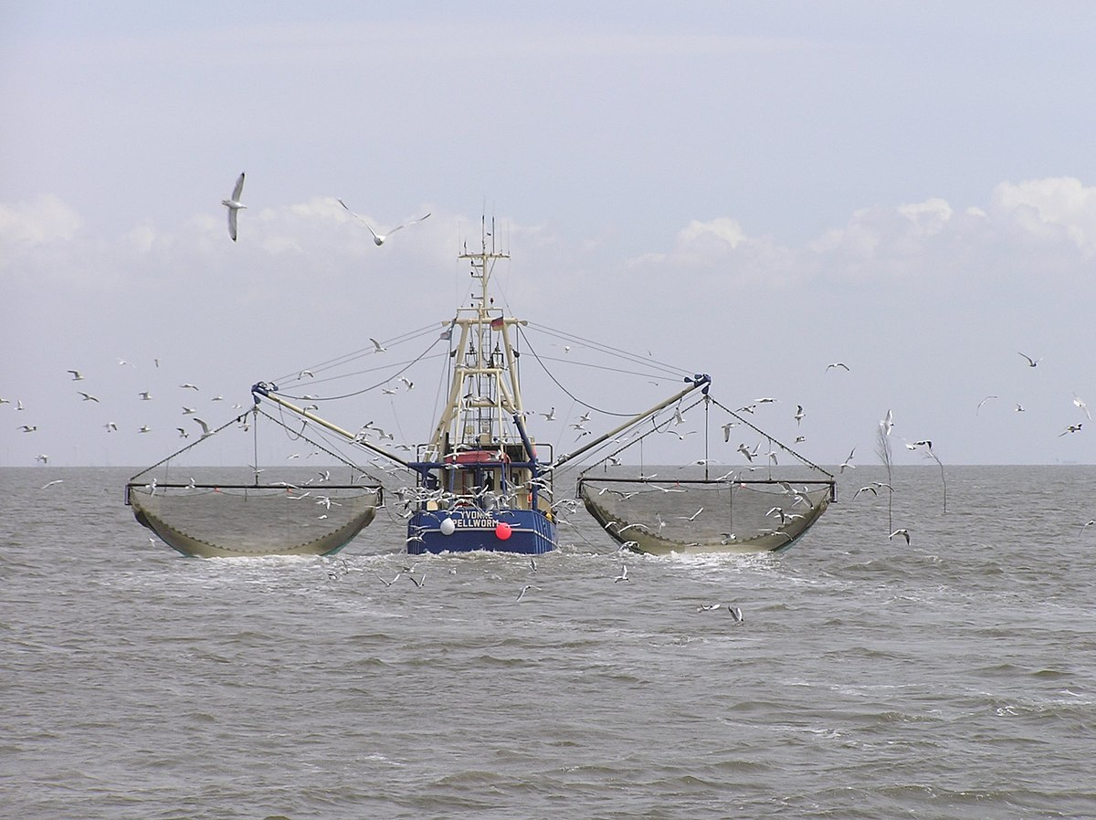 Fishing vessel wikipedia for Offshore fishing boat manufacturers