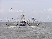Perikanan Tangkap Wikipedia Bahasa Indonesia Ensiklopedia Bebas