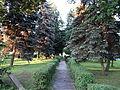 Krzeszów - park.jpg