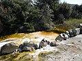 Kuirau Park. Rotorua - panoramio (1).jpg