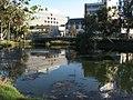 La Brea Tar Pits, Los Angeles, California (3125760578).jpg
