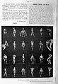 La Culture Physique, 1904, Eugene Sandlow. Wellcome L0024072.jpg