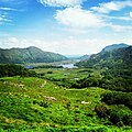 Ladies View in Summer Kerry Ireland.jpg