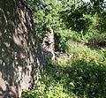 Laigh Borland, walled garden north wall, Dunlop, Ayrshire.jpg