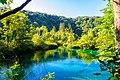 Lake (20502180388).jpg