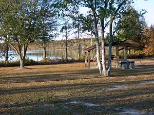 Jones Lake State Park - The picnic area with Jones Lake in the background