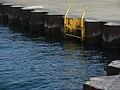 Lake Michigan ladder (3520073372).jpg