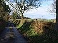 Lane to Bridford - geograph.org.uk - 1228516.jpg