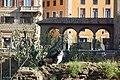 Largo di Torre Argentina (44708387640).jpg