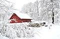Lebenswertes chemnitz winter stadtpark schnee rotes holzhaus kleingartensparte rosarium 1.jpg