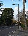Leigham Court Road (3) - geograph.org.uk - 1625602.jpg