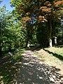 Lesopark u zámku.jpg