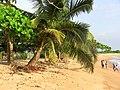 Liberia, Africa - panoramio (201).jpg