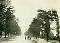 Lindell Boulevard west from Union Boulevard. River Des Peres flood of 20 August, 1915.jpg
