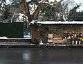 Little Flower Shop - panoramio - M. PINARCI.jpg