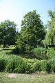 Ljubljana Botanic Garden - pond.jpg
