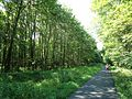 Loantaka Brook Reservation bikeway pathway with joggers.jpg