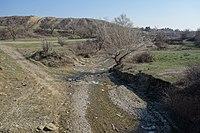 Lochini (Didi Lilo-Norio road) 2.JPG