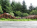 Logs ready for collection - geograph.org.uk - 1975696.jpg