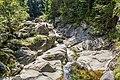 Lolaia River-9070.jpg