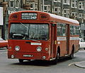 London Transport bus SMS632 (EGN 632J) 1971 AEC Swift Park Royal, Golders Green, route 240A, April 1978.jpg