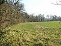 Long Plantation - geograph.org.uk - 383127.jpg