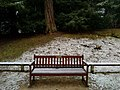 Long shot of the bench (OpenBenches 3925-1).jpg