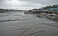 Low tide at Penryn 1 (3471983812).jpg
