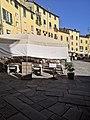 Lucca, Piazza dell'Anfiteatro (8).jpg