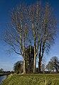 Luchtwachttoren Schoonebeek.jpg
