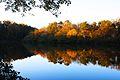 Lullwater Candler Lake.jpg
