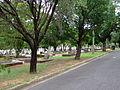 Lutwyche Cemetery 2.JPG