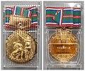 Médaille d'or officielle lors de la 60ème rencontre sportive internationale d'Okayama.jpg