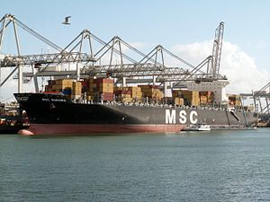 MSC Susanna p2, at the Amazone harbour, Port of Rotterdam, Holland 29-Apr-2006.jpg