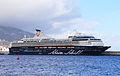 MS Mein Schiff 1 R02.jpg
