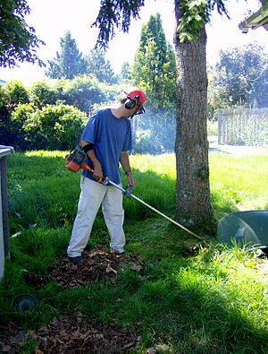 String trimmer - A man using a gasoline-powered string trimmer