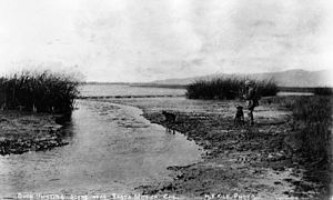 Ballona Creek - Duck hunting on the Ballona lowlands, 1890.