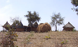 Matakam dwellings near Maroua.jpg