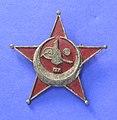 Medal, decoration (AM 768453-4).jpg