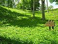 Medvegalis.Sumonu kalnas.2009-05-21.jpg