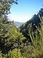 Migliana-paesaggio 7.jpg
