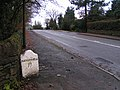 Milestone, B5470 - geograph.org.uk - 87107.jpg