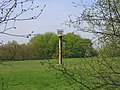 Millennium Beacon, Little Warley Common - geograph.org.uk - 163950.jpg