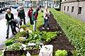 Ministru kabineta dārzeņu dobes atklāšana (7247951834).jpg