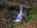 Monkcastle Burn small waterfall.JPG