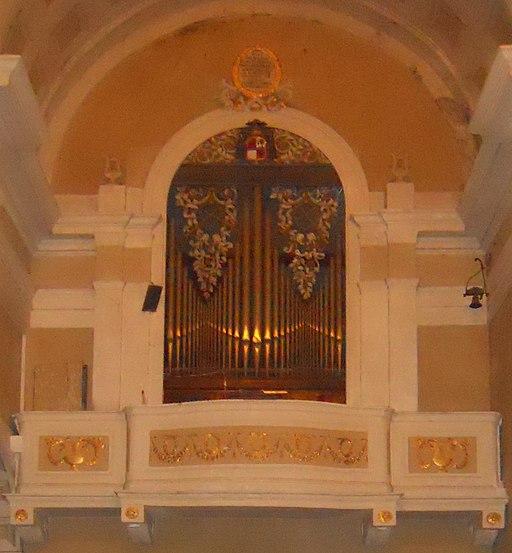 Montalcino, Concattedrale del Santissimo Salvatore - Organo a canne