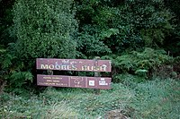 Moore's Bush Sign KC 010519.jpg