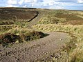 Moorland track at Coplie Burn - geograph.org.uk - 588454.jpg