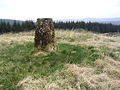 Moss covered trig point - geograph.org.uk - 424263.jpg